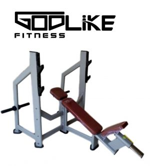 GODLIKE 6000 SERIES COMMERCIAL INCLINE BENCH WITH PLATE STORAGE